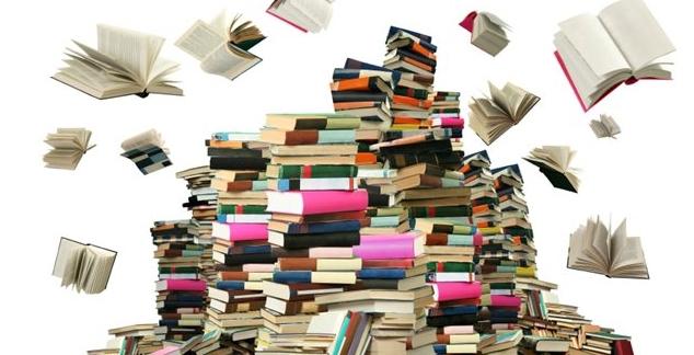 Les nouveautés à la bibliothèque