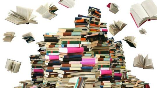 Des nouveautés à la bibliothèque!